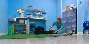 rehabilitacion mascotas madrid