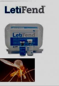campaña leishmania