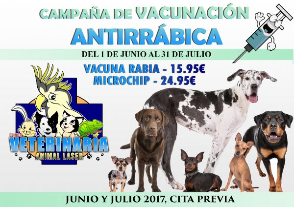 Clinica veterinaria en Arroyomolinos